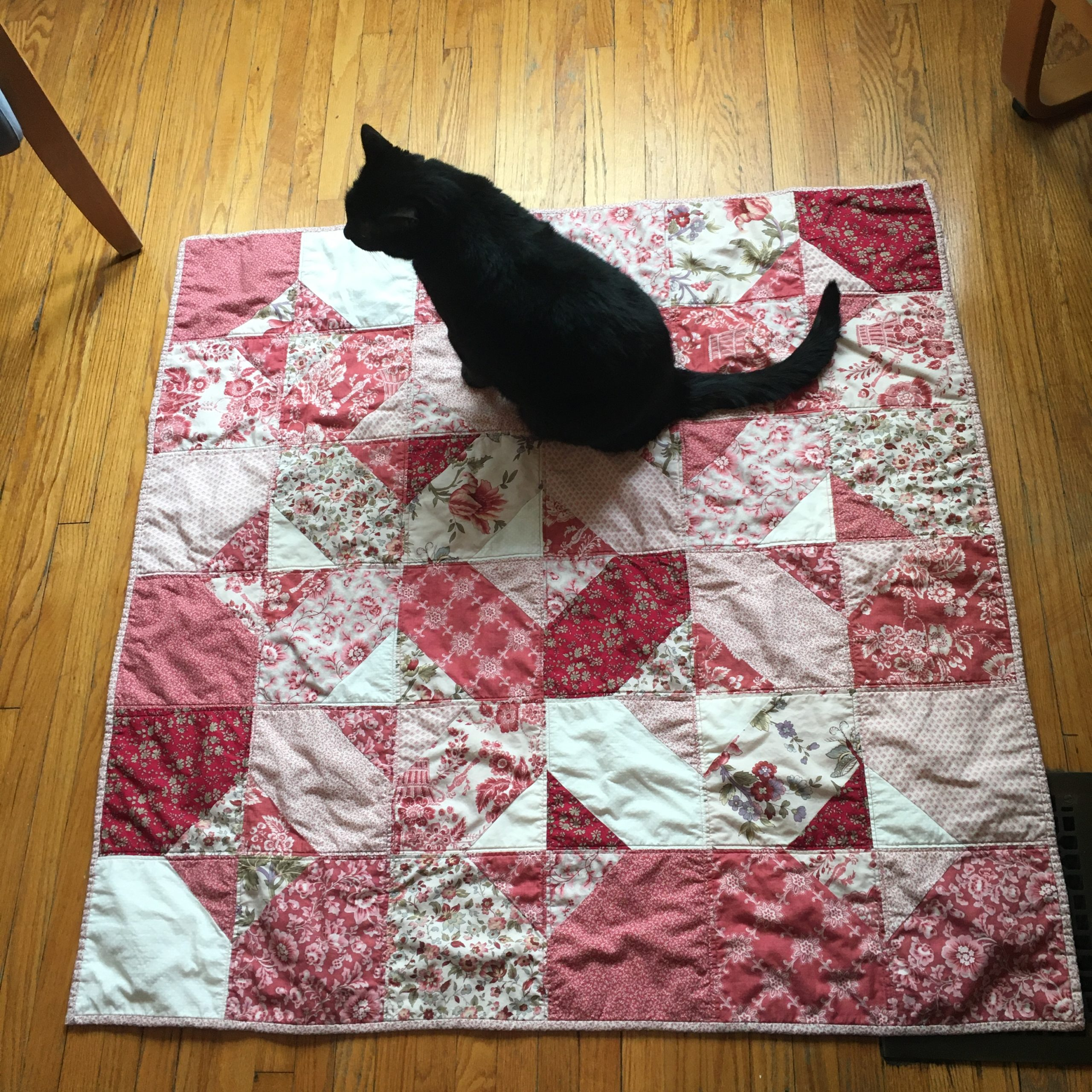Finished quilt, with cat